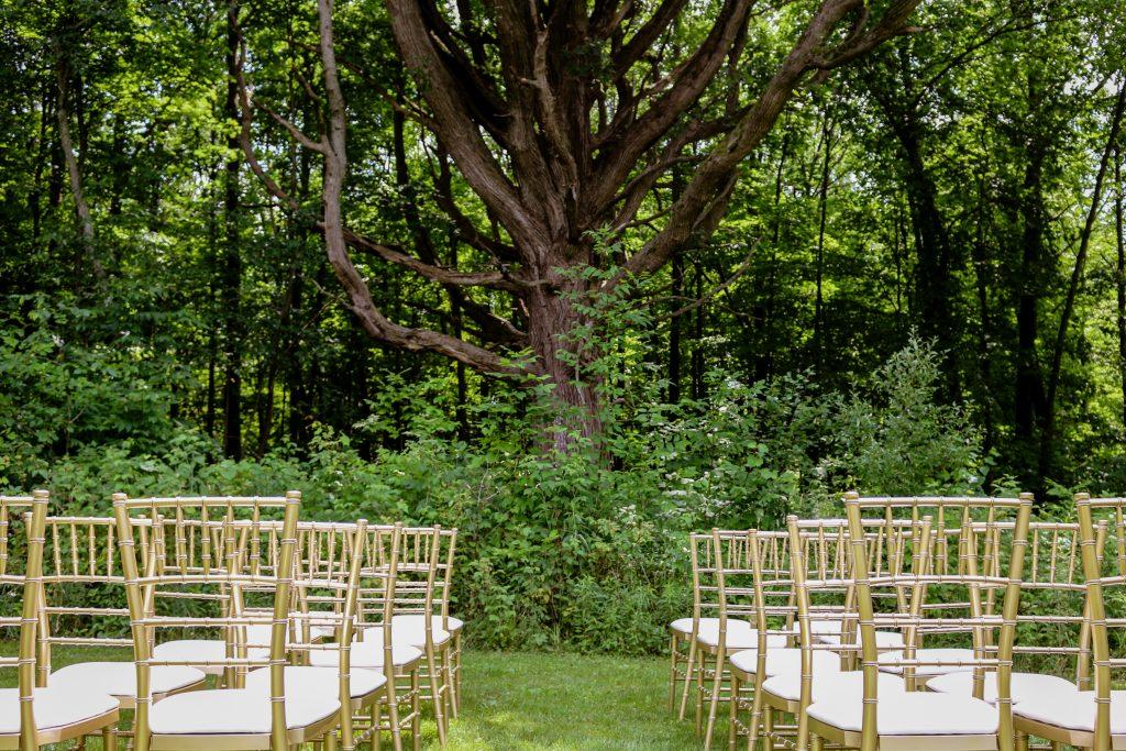 Wedding Chairs Rental in Detroit, Mi